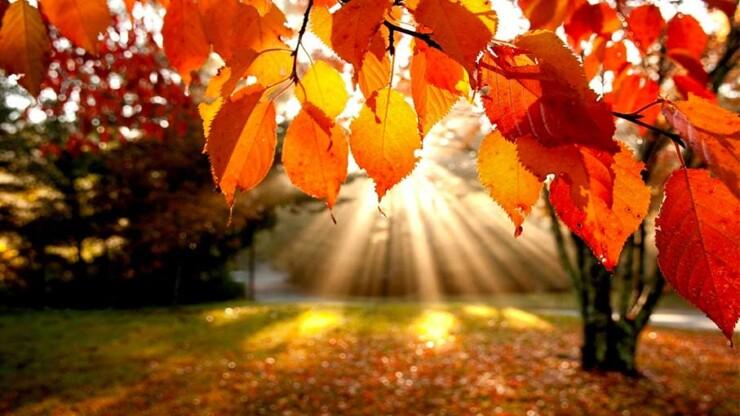 Bentornato autunno, benvenuto Self-Storage!